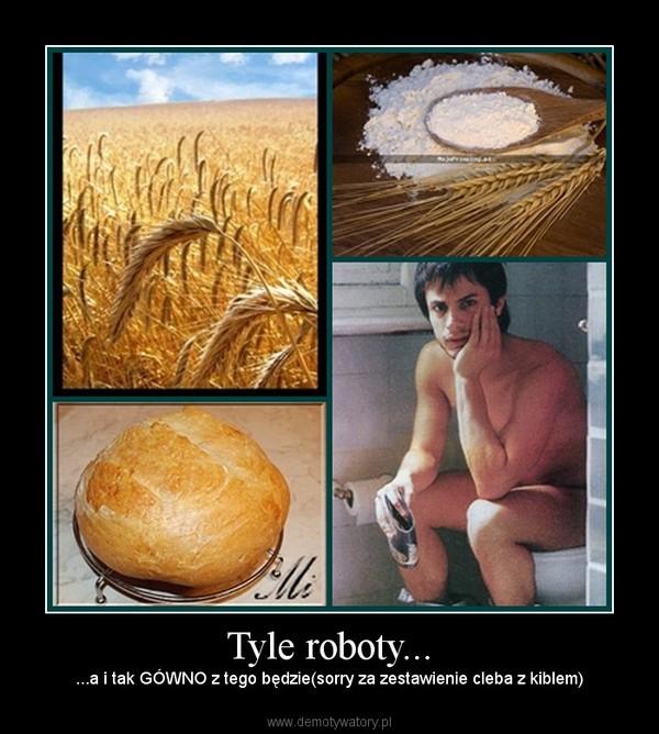 Tyle roboty... –  ...a i tak GÓWNO z tego będzie(sorry za zestawienie cleba z kiblem)