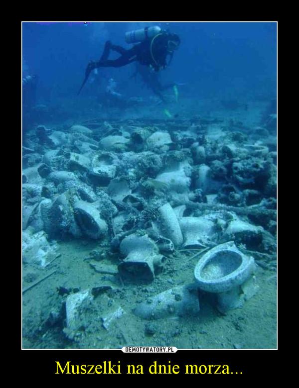 Muszelki na dnie morza... –
