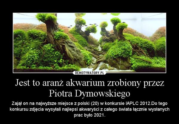 Jest to aranż akwarium zrobiony przez Piotra Dymowskiego – Zajął on na najwyższe miejsce z polski (20) w konkursie IAPLC 2012.Do tego konkursu zdjęcia wysyłali najlepsi akwaryści z całego świata łącznie wysłanych prac było 2021.