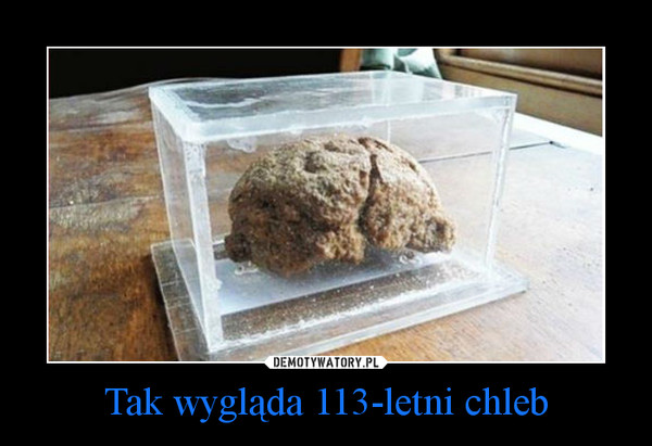Tak wygląda 113-letni chleb –