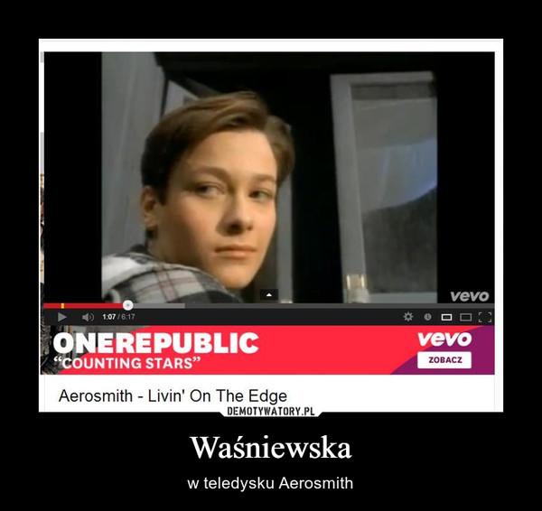 Waśniewska – w teledysku Aerosmith