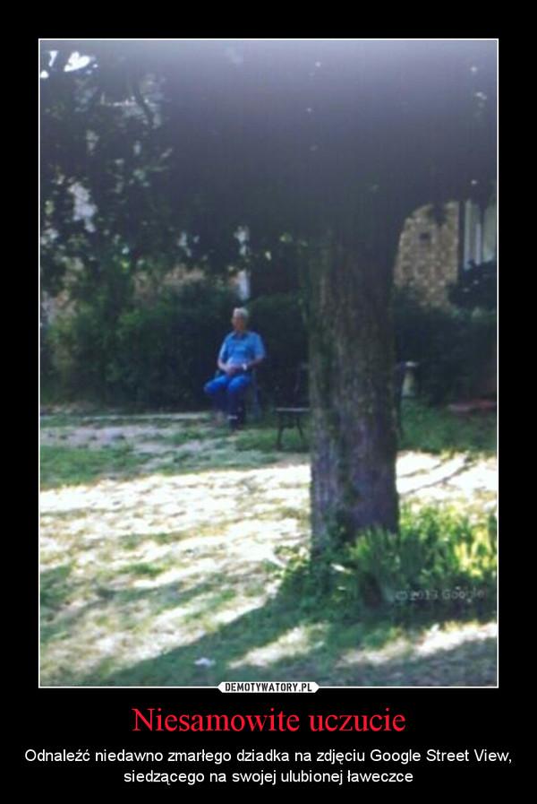 Niesamowite uczucie – Odnaleźć niedawno zmarłego dziadka na zdjęciu Google Street View, siedzącego na swojej ulubionej ławeczce