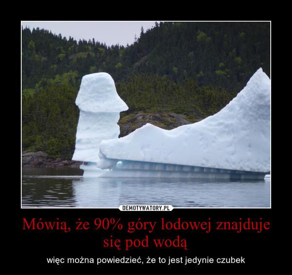 Mówią, że 90% góry lodowej znajduje się pod wodą – więc można powiedzieć, że to jest jedynie czubek