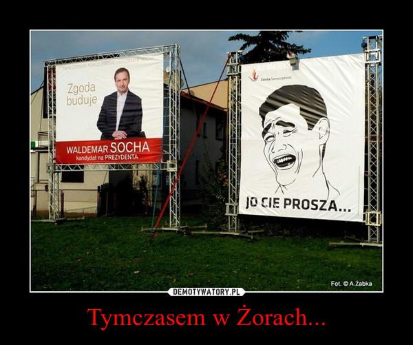 Tymczasem w Żorach... –