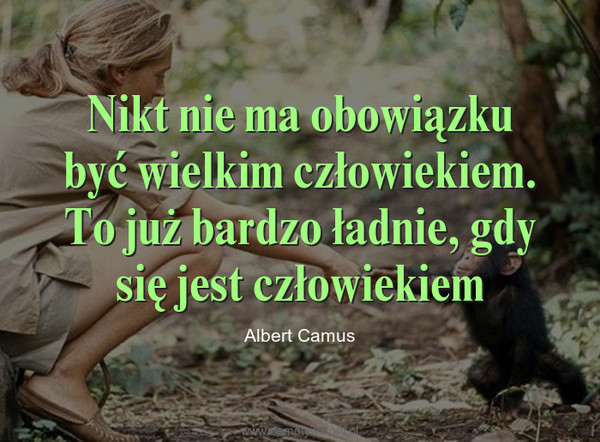 Nikt nie ma obowiązku być wielkim człowiekiem. To już bardzo ładnie, gdy się jest człowiekiem – Albert Camus