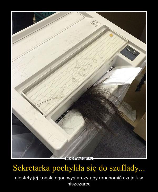 Sekretarka pochyliła się do szuflady... – niestety jej koński ogon wystarczy aby uruchomić czujnik w niszczarce