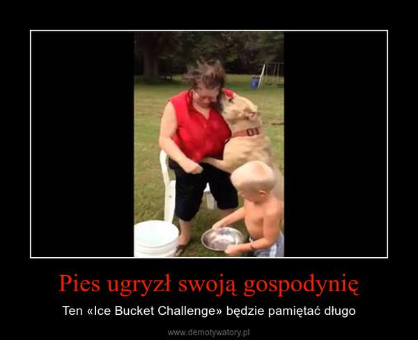 Pies ugryzł swoją gospodynię – Ten «Ice Bucket Challenge» będzie pamiętać długo