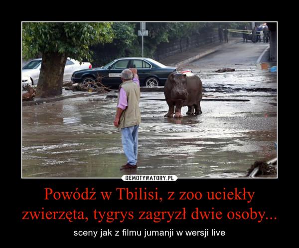 Powódź w Tbilisi, z zoo uciekły zwierzęta, tygrys zagryzł dwie osoby... – sceny jak z filmu jumanji w wersji live