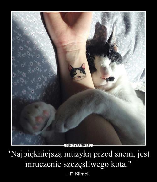 """""""Najpiękniejszą muzyką przed snem, jest mruczenie szczęśliwego kota."""""""