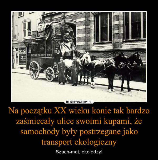 Na początku XX wieku konie tak bardzo zaśmiecały ulice swoimi kupami, że samochody były postrzegane jako transport ekologiczny – Szach-mat, ekolodzy!