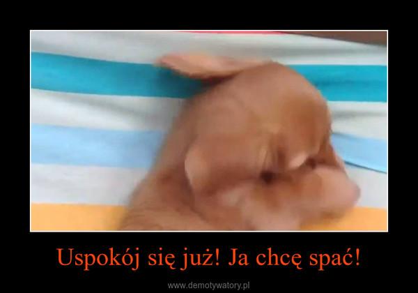 Uspokój się już! Ja chcę spać! –