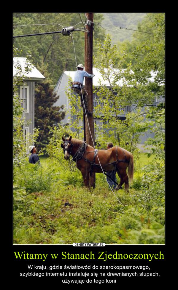 Witamy w Stanach Zjednoczonych – W kraju, gdzie światłowód do szerokopasmowego, szybkiego internetu instaluje się na drewnianych slupach, używając do tego koni