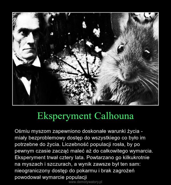 Eksperyment Calhouna – Ośmiu myszom zapewniono doskonałe warunki życia - miały bezproblemowy dostęp do wszystkiego co było im potrzebne do życia. Liczebność populacji rosła, by po pewnym czasie zacząć maleć aż do całkowitego wymarcia. Eksperyment trwał cztery lata. Powtarzano go kilkukrotnie na myszach i szczurach, a wynik zawsze był ten sam: nieograniczony dostęp do pokarmu i brak zagrożeń powodował wymarcie populacji