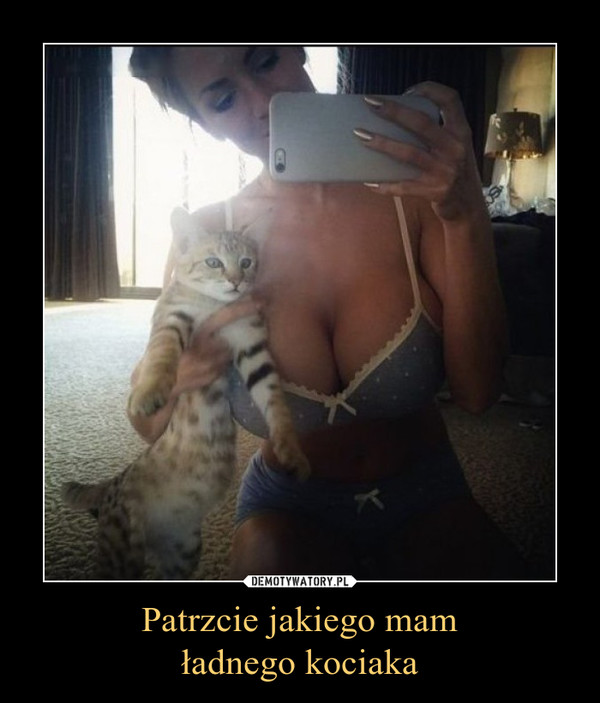 Patrzcie jakiego mamładnego kociaka –