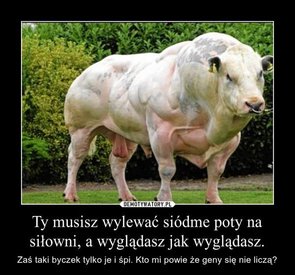 Ty musisz wylewać siódme poty na siłowni, a wyglądasz jak wyglądasz – Zaś taki byczek tylko je i śpi. Kto mi powie, że geny się nie liczą?