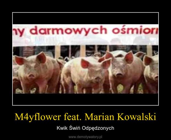 M4yflower feat. Marian Kowalski – Kwik Świń Odpędzonych