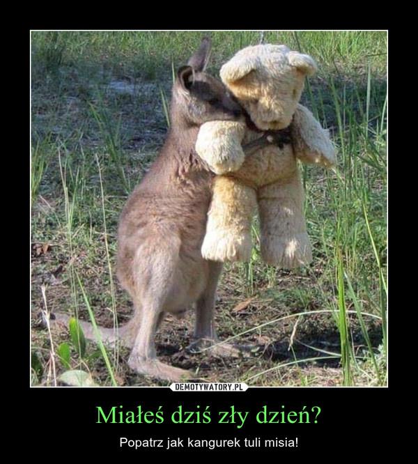 Miałeś dziś zły dzień? – Popatrz jak kangurek tuli misia!