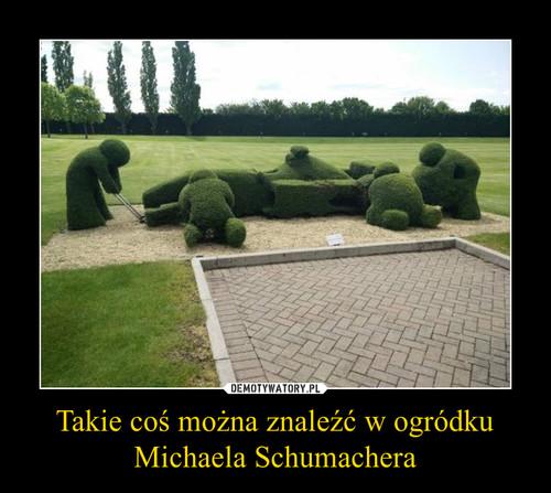 Takie coś można znaleźć w ogródku Michaela Schumachera