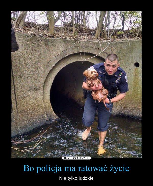 Bo policja ma ratować życie – Nie tylko ludzkie