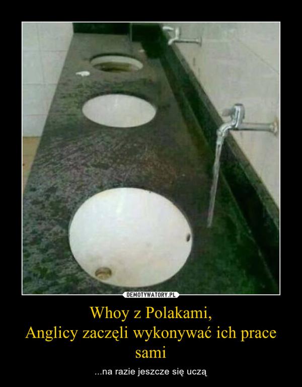 Whoy z Polakami,Anglicy zaczęli wykonywać ich prace sami – ...na razie jeszcze się uczą