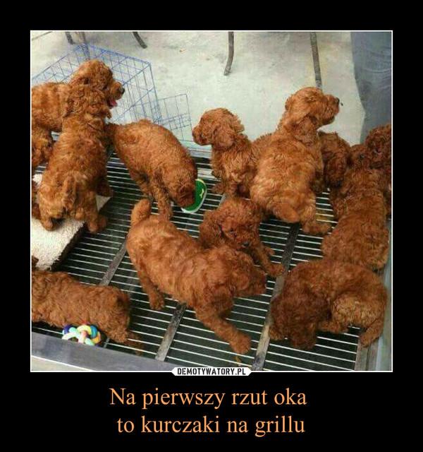 Na pierwszy rzut oka to kurczaki na grillu –