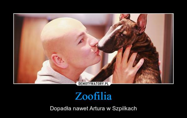 Zoofilia – Dopadła nawet Artura w Szpilkach