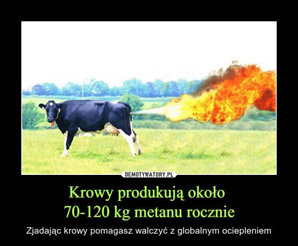 Krowy produkują około 70-120 kg metanu rocznie – Zjadając krowy pomagasz walczyć z globalnym ociepleniem