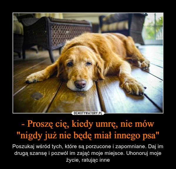 """- Proszę cię, kiedy umrę, nie mów """"nigdy już nie będę miał innego psa"""" – Poszukaj wśród tych, które są porzucone i zapomniane. Daj im drugą szansę i pozwól im zająć moje miejsce. Uhonoruj moje życie, ratując inne"""