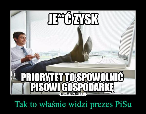 Tak to właśnie widzi prezes PiSu –