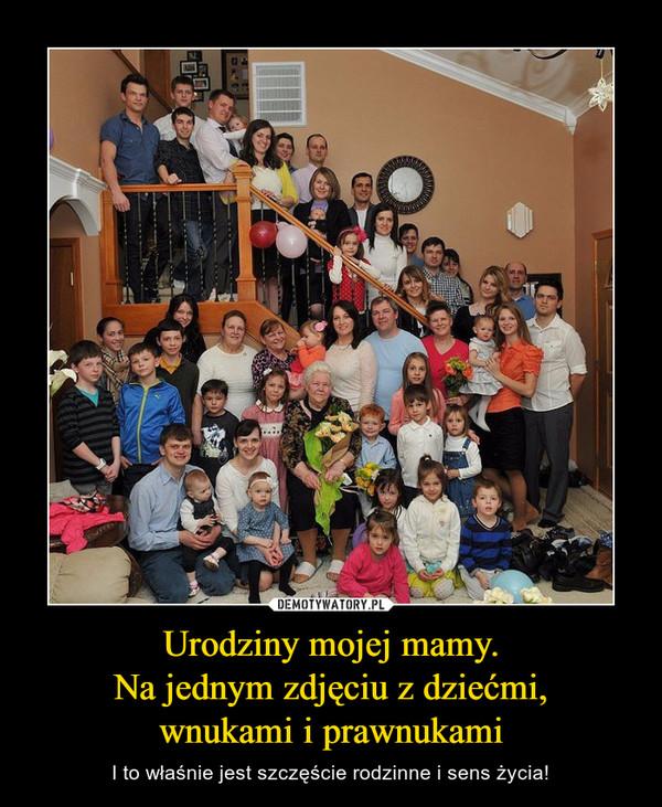 Urodziny mojej mamy.Na jednym zdjęciu z dziećmi,wnukami i prawnukami – I to właśnie jest szczęście rodzinne i sens życia!