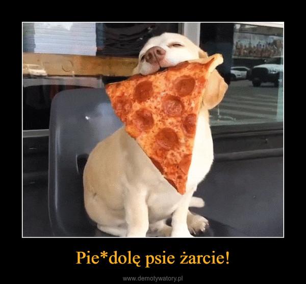 Pie*dolę psie żarcie! –