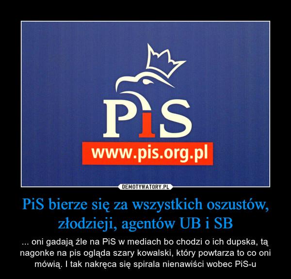 PiS bierze się za wszystkich oszustów, złodzieji, agentów UB i SB – ... oni gadają źle na PiS w mediach bo chodzi o ich dupska, tą nagonke na pis ogląda szary kowalski, który powtarza to co oni mówią. I tak nakręca się spirala nienawiści wobec PiS-u