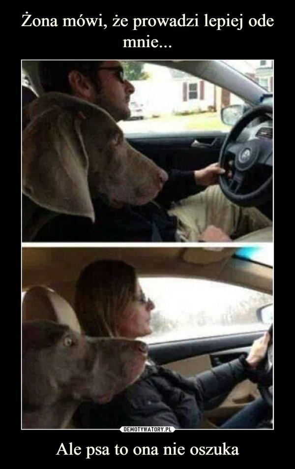 Ale psa to ona nie oszuka –