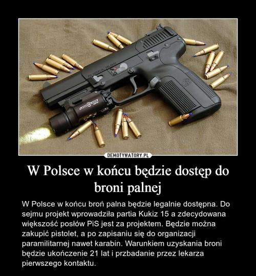 W Polsce w końcu będzie dostęp do broni palnej