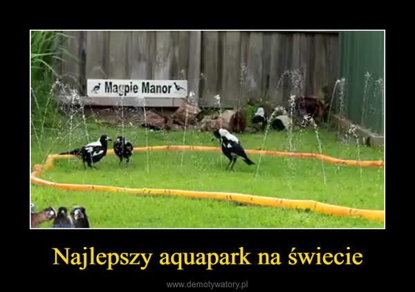 Najlepszy aquapark na świecie –