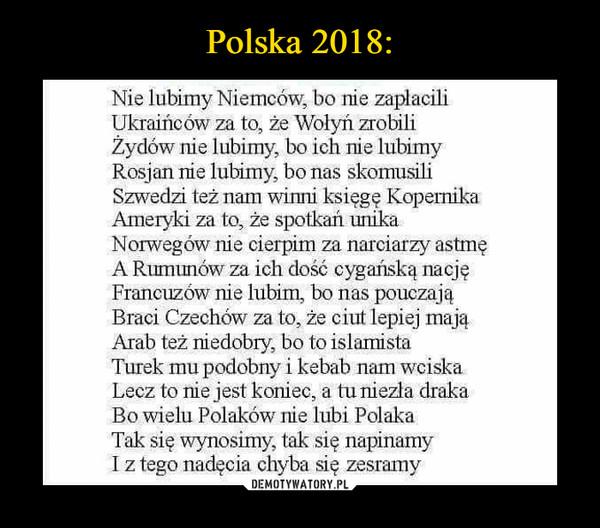 –  Nie lubimy Niemców, bo nie zapłacili Ukraińców za to, że Wołyń zrobili Żydów nie lubimy, bo ich nie lubimy Rosjan nie lubimy, bo nas skomusili Szwedzi też nam winni księgę Kopernika Ameryki za to, że spotkań unika Norwegów nie cierpim za narciarzy astmę A Rumunów za ich dość cygańską nację Francuzów nie lubim, bo nas pouczają Braci Czechów za to, że ciut lepiej mają Arab też niedobry, bo to islamista Turek mu podobny i kebab nam wciska Lecz to nie jest koniec, a tu niezła draka Bo wielu Polaków nie lubi Polaka Tak się wynosimy, tak się napinamy I z tego nadęcia chyba się zesramy