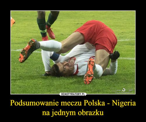Podsumowanie meczu Polska - Nigeria na jednym obrazku