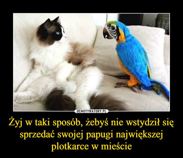 Żyj w taki sposób, żebyś nie wstydził się sprzedać swojej papugi największej plotkarce w mieście –