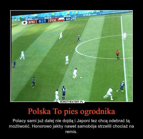 Polska To pies ogrodnika – Polacy sami już dalej nie dojdą i Japoni tez chcą odebrać tą możliwość. Honorowo jakby nawet samobója strzelili chociaż na remis.