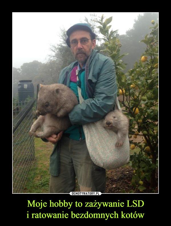 Moje hobby to zażywanie LSDi ratowanie bezdomnych kotów –
