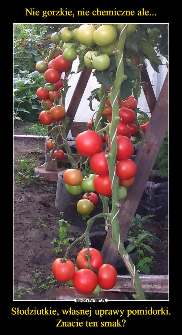 Słodziutkie, własnej uprawy pomidorki. Znacie ten smak? –