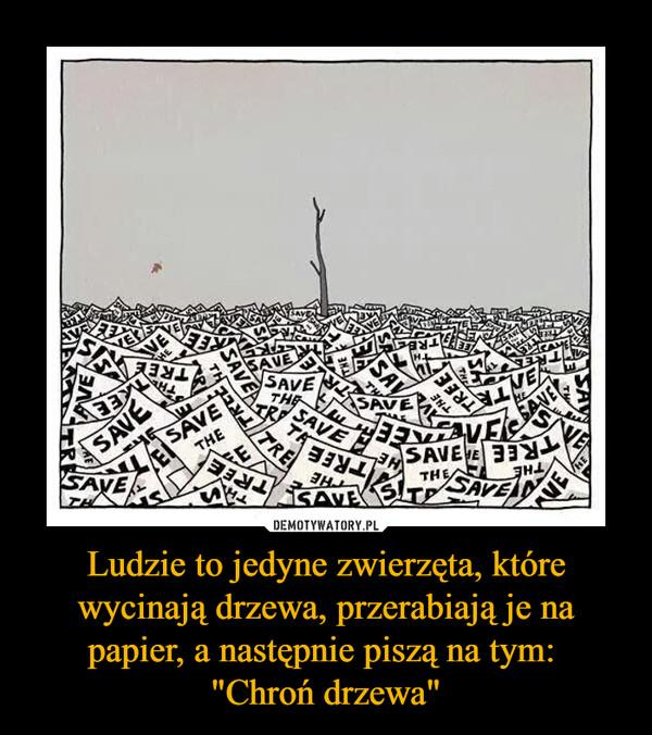 """Ludzie to jedyne zwierzęta, które wycinają drzewa, przerabiają je na papier, a następnie piszą na tym: """"Chroń drzewa"""" –"""