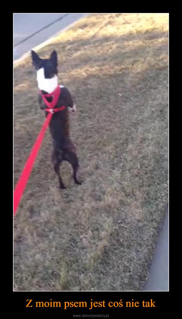 Z moim psem jest coś nie tak –