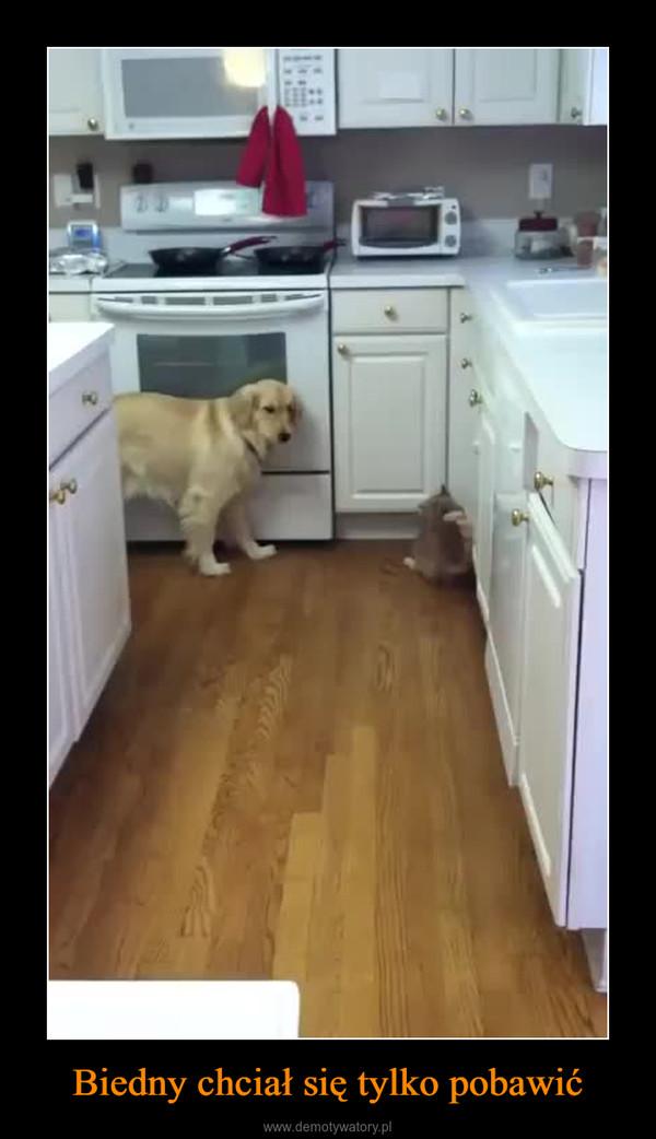 Biedny chciał się tylko pobawić –