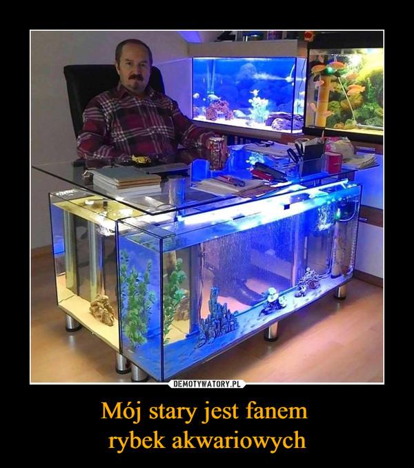 Mój stary jest fanem rybek akwariowych –