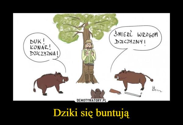 Dziki się buntują –