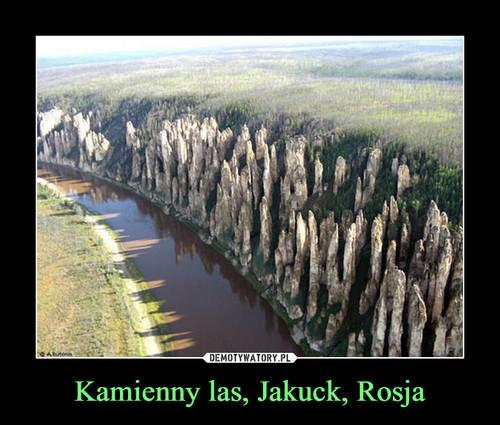 Kamienny las, Jakuck, Rosja