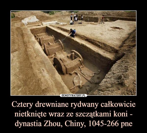 Cztery drewniane rydwany całkowicie nietknięte wraz ze szczątkami koni - dynastia Zhou, Chiny, 1045-266 pne –