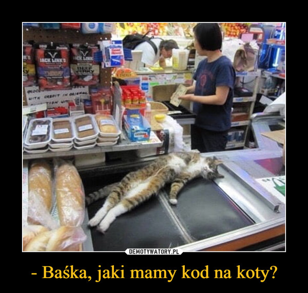 - Baśka, jaki mamy kod na koty? –