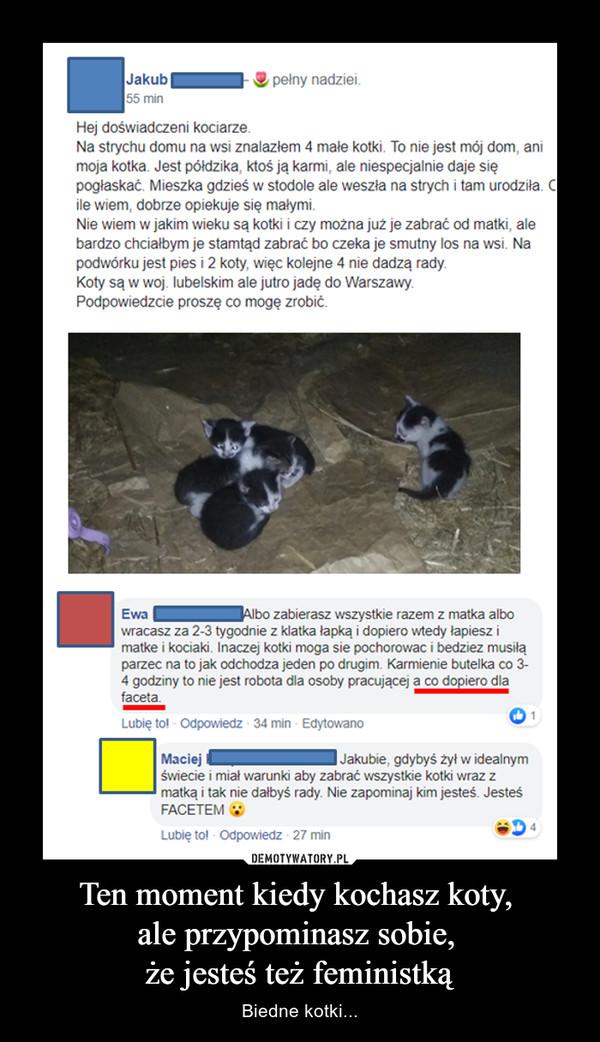 Ten moment kiedy kochasz koty, ale przypominasz sobie, że jesteś też feministką – Biedne kotki...